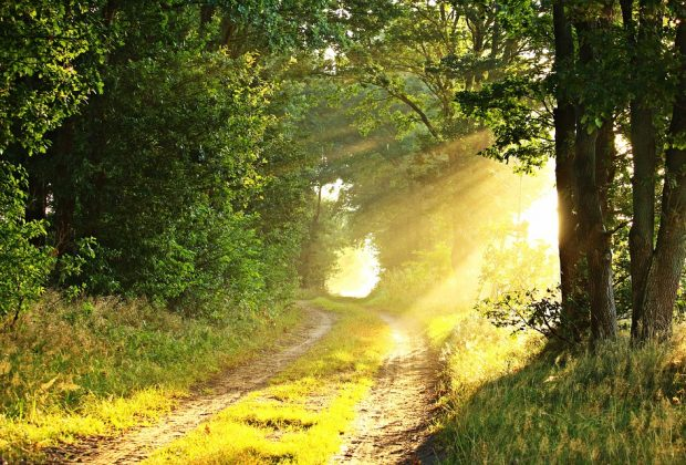 Matahari dan Cahayanya