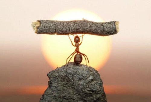 Tidak Ada Urusan yang Sulit Jika Allah Menghendaki Kemudahan